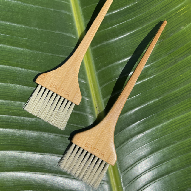 COLORTRAK ECO COLLECTION BAMBOO 2 BRUSH 1